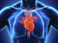 Adrenaline and vasopressin for cardiac arrest