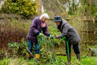 two older women are gardening