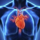 Adrenaline and vasopressin for cardiac arrest