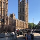 This week Cochrane was given the opportunity to speak as part of the UK's first ever Evidence Week at the Houses of Parliament in London, UK