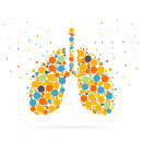 Artist concept of lungs